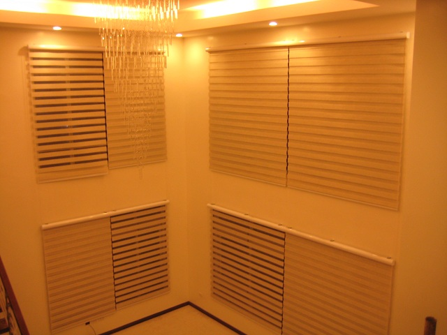 DS Windows & Walls Combi Blinds