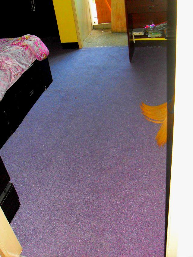 Wall-to-Wall Carpet Installed in a Bedroom Area