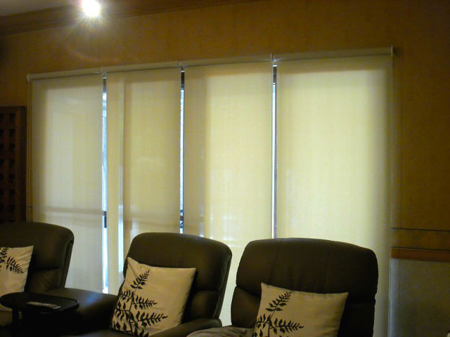 Sunscreen Roller Blinds for Music Room