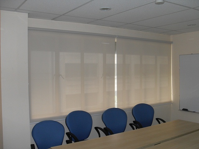 Sunscreen Roller Blinds in Conference Room