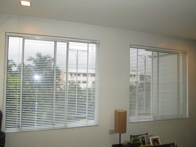 Mini Blinds and Its Clean Look and Affordable Price
