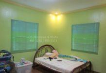Apple green room venetian blinds